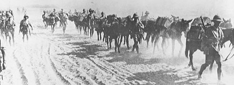 The British advance north through Iraq 1916